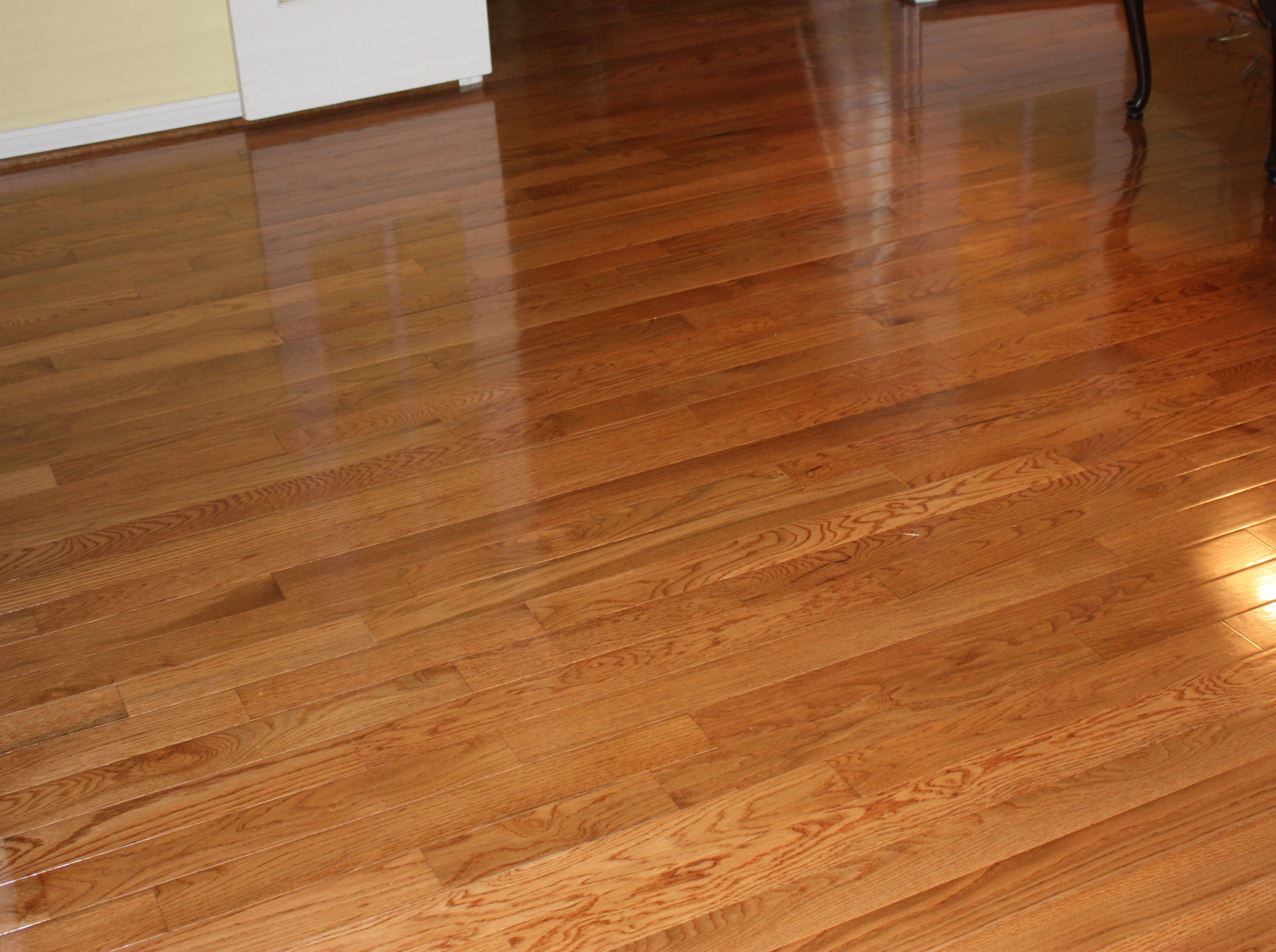 Best Floor For Dogs Laminate